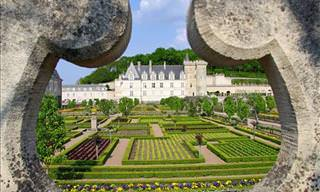 Château de Villandry: The Garden of Love