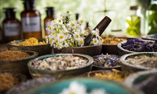 15 Medicinal Plants the Potency of Which Is Backed By Science