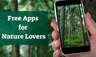 6 Apps Every Nature Lover Should Install On Their Phone