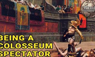 Watch: Life Of a Spectator Inside the Grand Colosseum