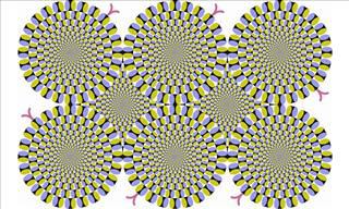 20 Optical Illusions to Make Your Head Spin