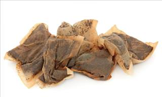 Uses of Tea Bags in Your Garden