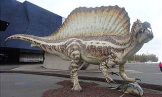 10 Largest Reptiles That Ever Existed
