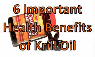 6 Important Health Benefits of Krill Oil