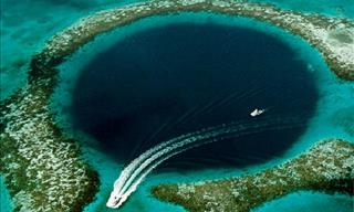 Looking For a Diving Adventure? Don't Miss These Places