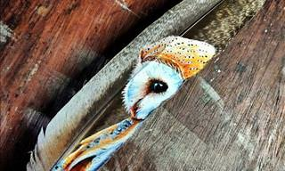 Stunning Art Painted on Feathers
