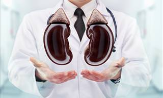 Signs Your Kidneys Are Malfunctioning