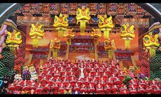 A Performance of a Lifetime: The Dragon-Lion Dance!