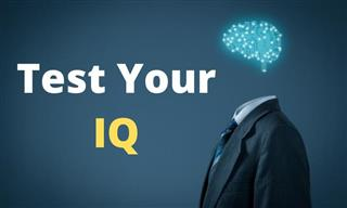 IQ QUIZ: Can You Show Us Your Smarts?