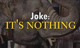 Joke: It's Nothing