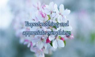 10 Quotes That Encourage You to Appreciate What You Have