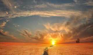 Under a Golden Sun...