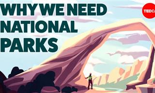 You Must Understand Why National Parks are Essential to Us