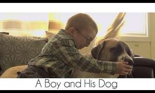 "The Award Winning Movie: ""A Boy and His Dog""."