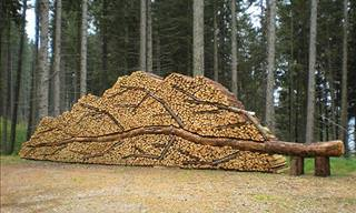 13 Pictures that Prove Even Log Piling Can Be Turned into Art