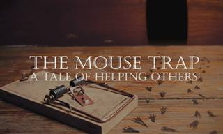 The Beautiful Tale of Mouse and Trap