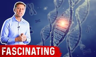 Find Out About the Multi-Organ Protector Gene in Our Body