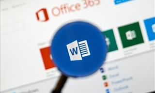 The Beginner's Guide to Microsoft Word
