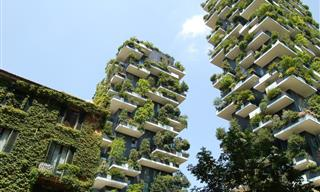 When Nature Meets Architecture - 11 Green Buildings Worldwide