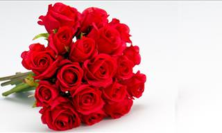 Send Symbolic Flowers to Someone Special