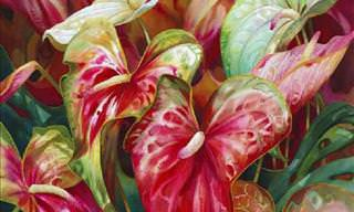 A Selection of Beautiful Flower Paintings by Darryl Trott