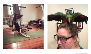 These Pets Have the Funniest and Cutest Morning Rituals!