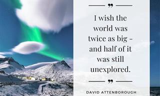 David Attenborough's Wisest Quotes About Life on Earth