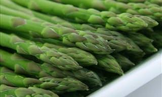 10 Convincing Reasons to Eat More Asparagus