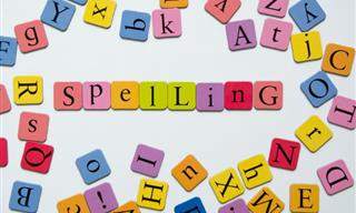 QUIZ: Can We Get You to Sit and Spell For a Bit?