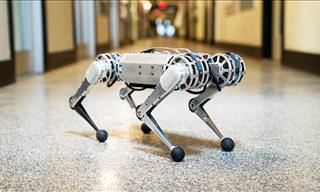 Introducing the Mini-Cheetah Robot