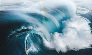 Breathtaking Images from the 2021 Drone Photo Awards