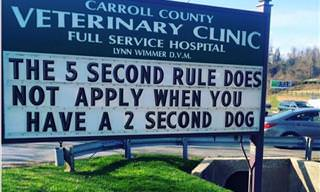 20 Hilarious Photos of Signs Found at Animal Hospitals