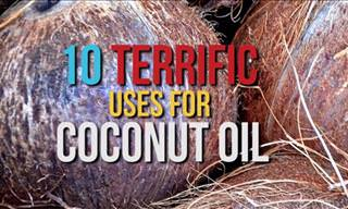 WATCH: 10 Surprising Uses of Coconut Oil