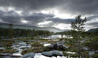 The Chilly Allure of Scandinavia!
