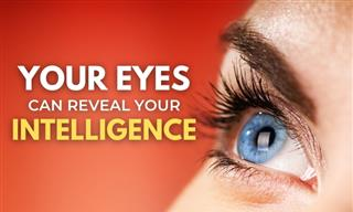 What Your Eyes Can Reveal About Your Intelligence