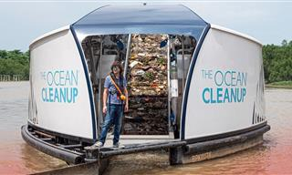 This Amazing Device Stops Plastic From Reaching the Oceans