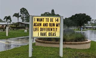 These 21 Signs Are As Funny and Clever As It Gets!