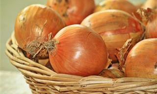 CDC Warns Shoppers to Avoid Certain Brands of Onions