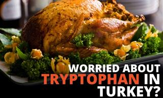 Tryptophan in Turkey - Does It Really Make You Tired?