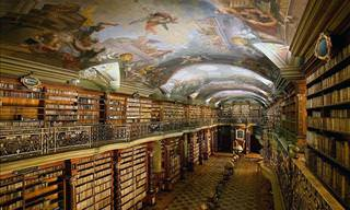 Welcome to the Most Beautiful Library in the World