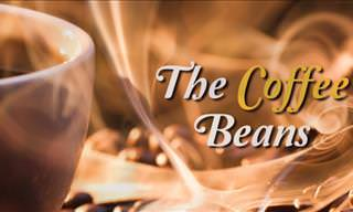 Inspiring Story: The Coffee Beans