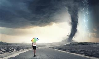 QUIZ: What Will You Do If Disaster Strikes?