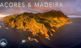 A Visit to the Azores and Madeira islands