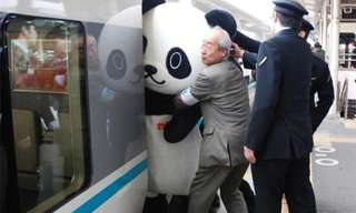 Things You Only See In Japan.