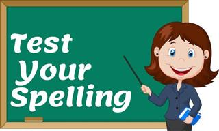 Spelling Bee: Will You Choose the Correct Spellings?