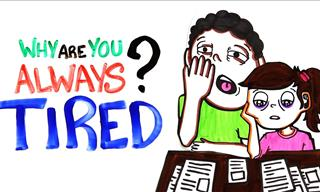 Why Are You Always Tired? Watch For An Answer.