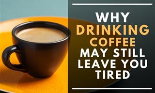 Why You Can Still Feel Tired After Drinking Coffee