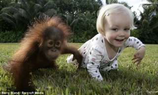 When Great Friends Meet Again - Adorable!