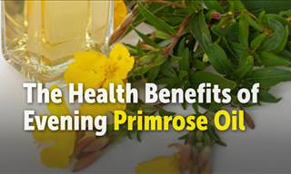 8 Health Benefits of Evening Primrose Oil