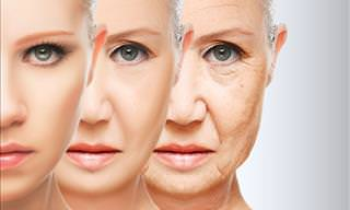 Is There a Cure for Aging?